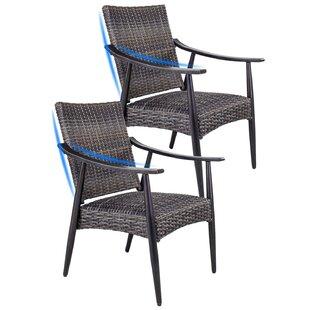 Patio Garden Wicker Dining Chairs Indoor Outdoor Rattan Arm Chairs, Set Of  2 (Set of 2)
