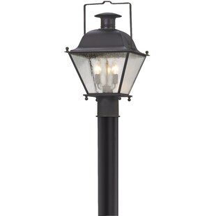 Darby Home Co Cromwell Outdoor 3-Light Lantern Head