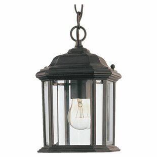 Burtt 1-Light Outdoor Hanging Lantern