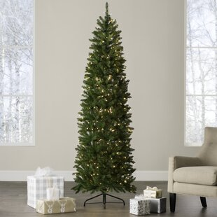 Slim Christmas Trees Youll Love Wayfair