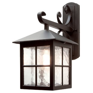 Popovich Down Outdoor Wall Lantern