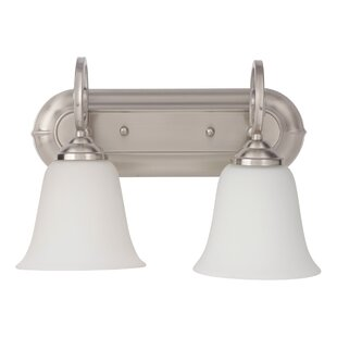 Hollingshead 2-Light Vanity Light by Alcott Hill