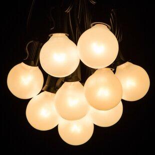 100 ft. 100-Light Globe String Lights