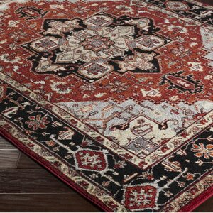 Brahim Gray/Red Area Rug