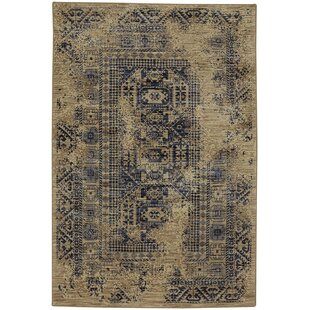 Affordable Providence Kezar Latte/Blue Area Rug By Mohawk Home