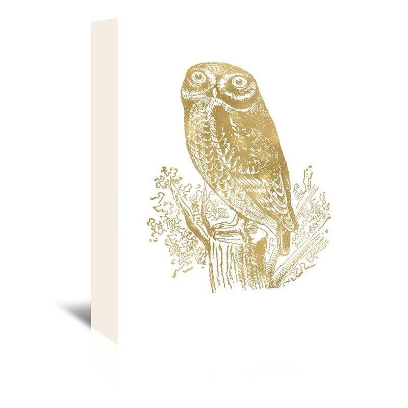 Millwood Pines Owl Rock Graphic Art On Wrapped Canvas Wayfair