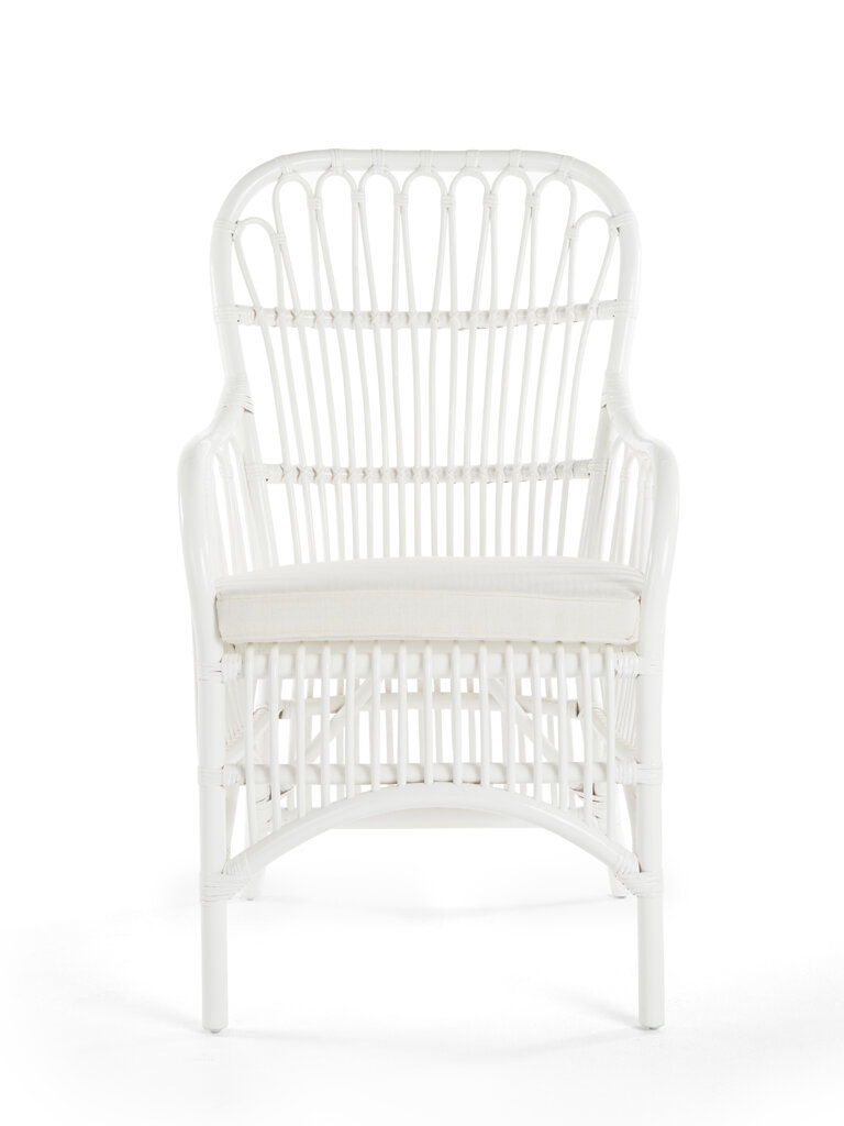Bayou Breeze Deloris Rattan Arm Chair | Wayfair
