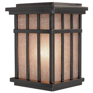 Bloomsbury Market Tenleytown Rustic 1-Light Outdoor Wall Lantern