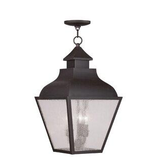 Alcott Hill Gahagan 3-Light Outdoor Hanging Lantern