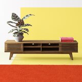 Brody TV Stand for TVs up to 78 by Hashtag Home