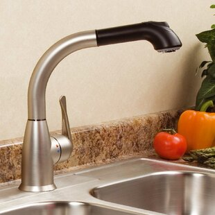cleanFLO Lily Pull Out Single Handle Kitchen Faucet