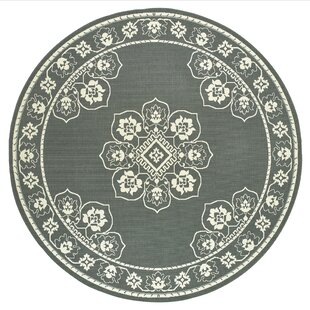 Medellin Casual Gray Indoor/Outdoor Area Rug