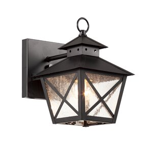 Buendia 1-Light Outdoor Wall Lantern