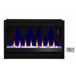 Coomes Contemporary Electric Fireplace Insert by Orren Ellis