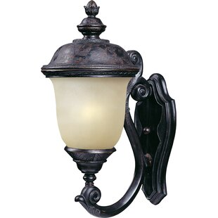 Inexpensive Roehl LED Outdoor Wall Lantern By Astoria Grand