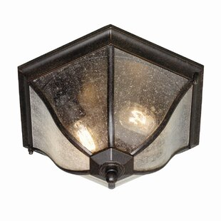 Trembley 2 Light Outdoor Flush Mount By Ophelia & Co.