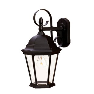 Prangins 1-Light Outdoor Wall Lantern