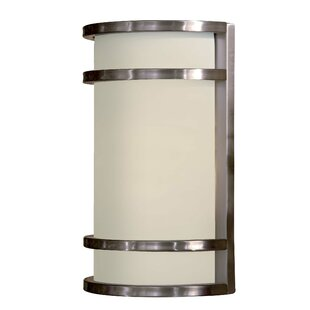 Latitude Run Janicki 2-Light Glass Shade Outdoor Flush Mount