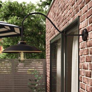 Chow 1-Light Outdoor Barn Light by Ebern Designs