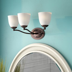 Rockford 3-Light Vanity Light by Beachcrest Home