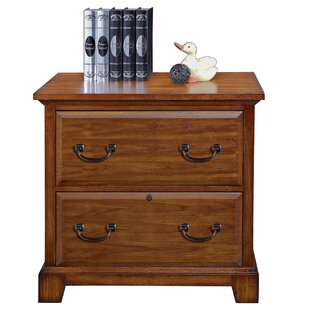 Darby Home Co Schueller 2-Drawer Lateral ..