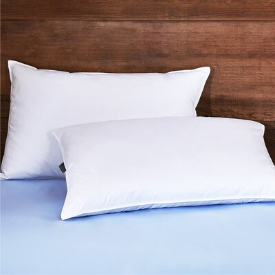 King Amp Queen Bed Pillows You Ll Love In 2019 Wayfair