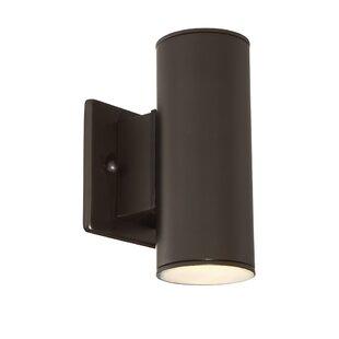 Cayuta 1-Light LED Outdoor Sconce