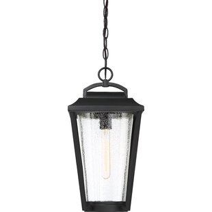 Buying Lucienne 1-Light Outdoor Hanging Lantern By Gracie Oaks