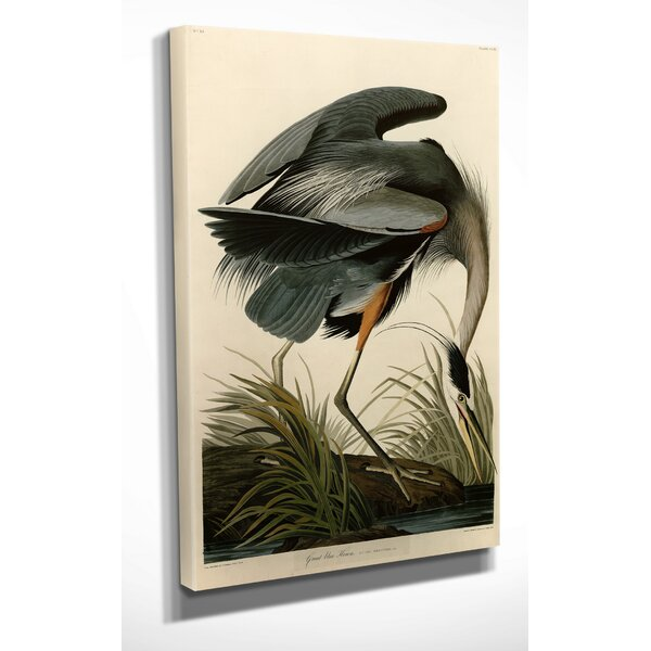 Audubon Birds White Heron Painting Wall Art Print Framed 12x16