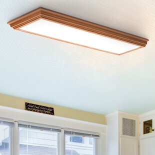 Flush Mount Led Ceiling Lights Wayfair