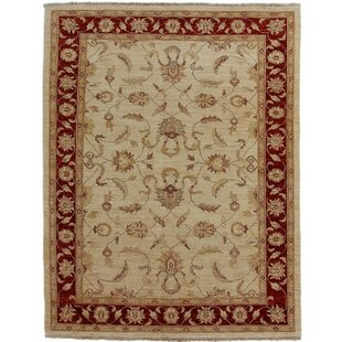 Bucyrus Hand Knotted Wool Beige Rug by Rosalind Wheeler