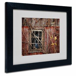 Barn wood window frame wayfair save solutioingenieria Image collections