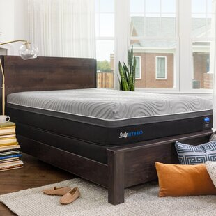 Search Results For Sealy Posturepedic Hybrid Elite Kelburn Mattress