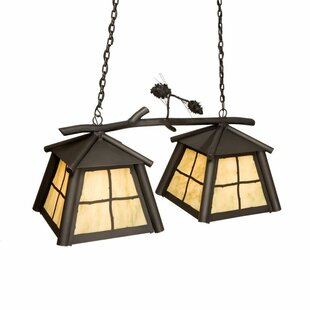 Steel Partners Saranac 2-Light Kitchen Is..