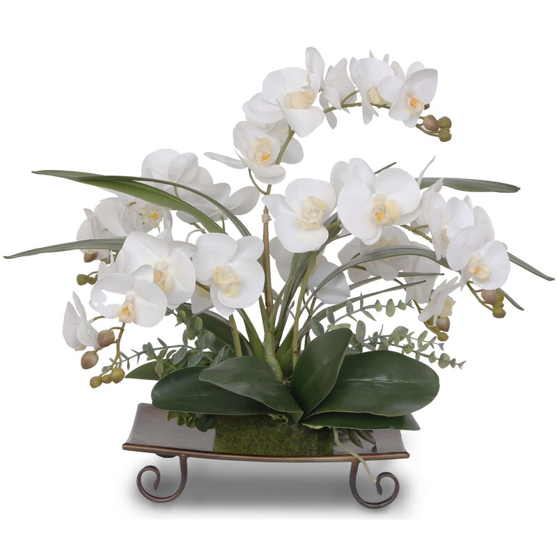 floral home decor orchid floral design wayfair.htm bay isle home real touch orchids orchids floral arrangement in  bay isle home real touch orchids