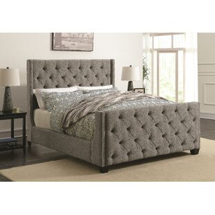 Alcott Hill Lattin Coaster Upholstered Panel Bed