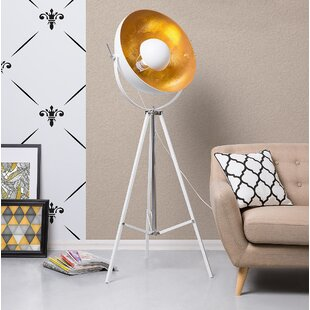 Where buy  Downend 65 Tripod Floor Lamp By Brayden Studio