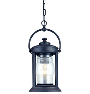 Villalvazo 1-Light Outdoor Hanging Lantern