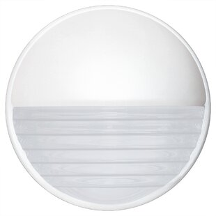Donnie Contemporary 1-Light Opaque Outdoor Flush Mount