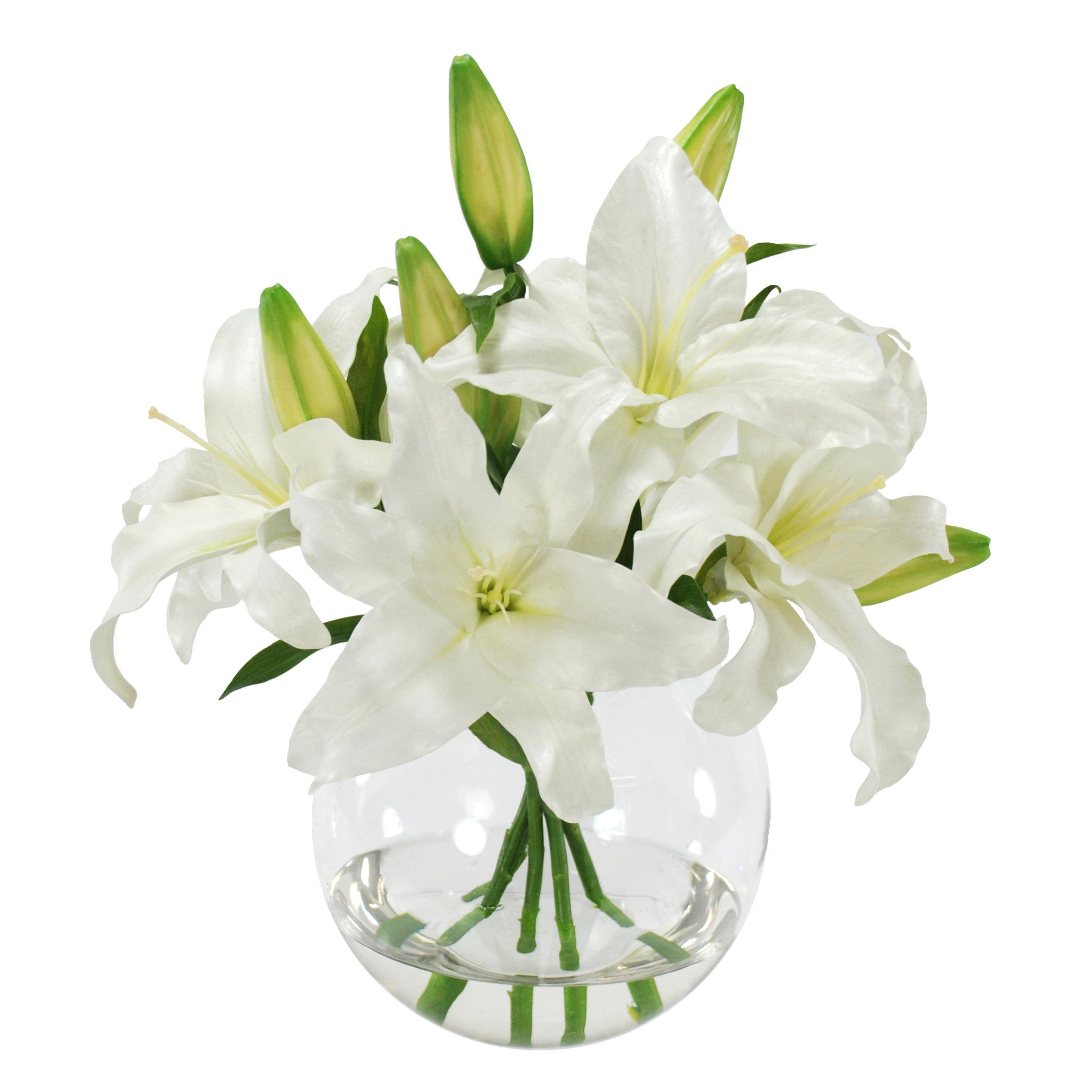 Casablanca Lily Floral Arrangement In Glass Vase Reviews Joss Main