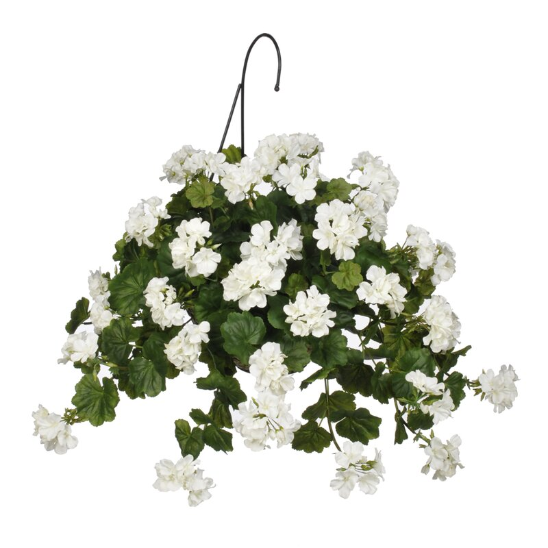 House Of Silk Flowers Artificial Geranium Hanging Basket Wayfair