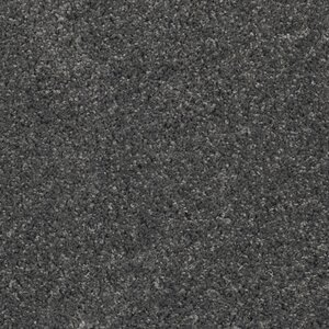 Curran Dark Gray Area Rug