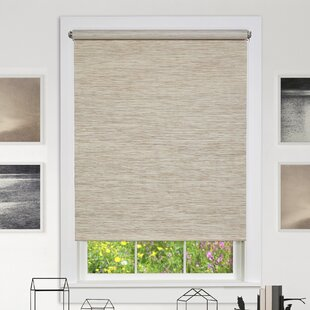 Blinds Window Shades