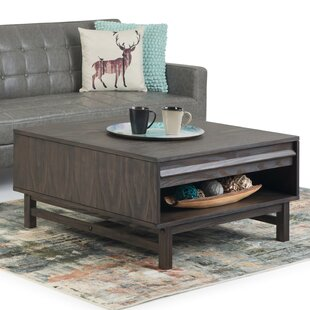 Mccarter Coffee Table with Storage by Brayden Studio