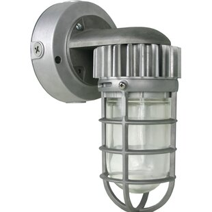 17 Stories Eustaquio 1-Light Outdoor Sconce