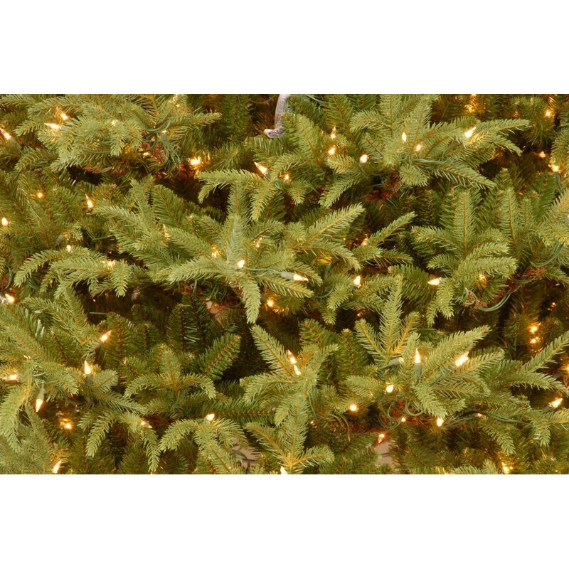 75 frasier green artificial christmas tree with 1000 clear lights and stand - Frasier Christmas Tree