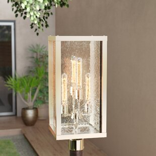 Anguiano 4-Light Lantern Head By Brayden Studio Outdoor Lighting