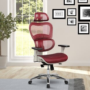 Eure Deluxe Mesh High Back Desk Chair With Neck Support