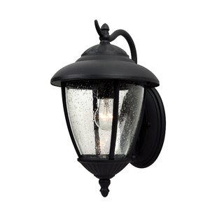 Best Price Dowling 1-Light Outdoor Wall Lantern By Alcott Hill