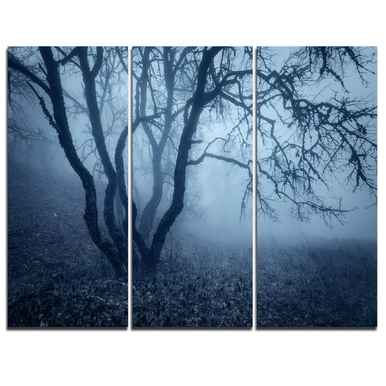 Designart Tree In Foggy Dark Forest 3 Piece Graphic Art On Wrapped Canvas Set Wayfair Ca
